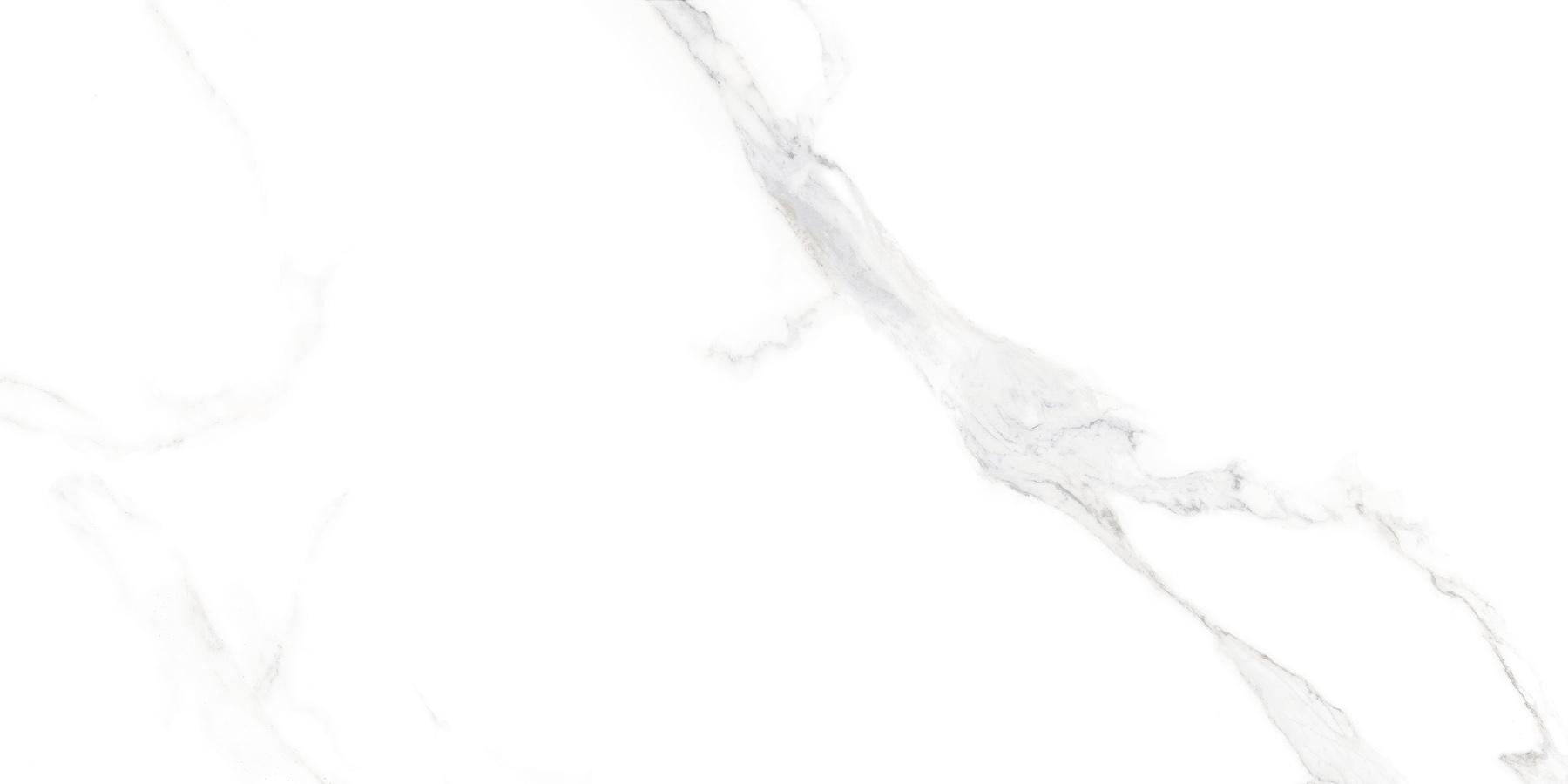 VJ17505P - 卡拉卡塔白