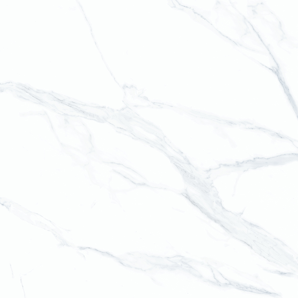 VAT8553P 鱼肚白