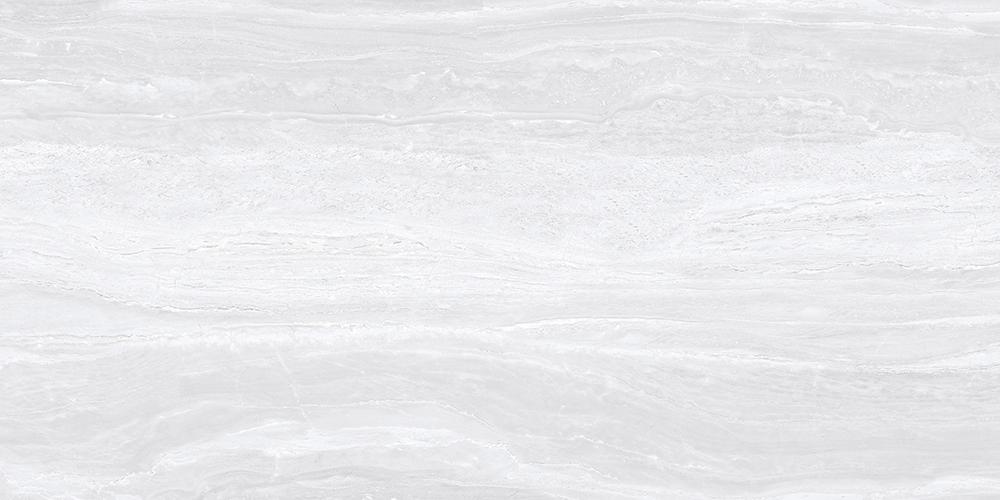 V84005 冰川洞石